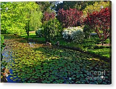 Lily Pond And Colorful Gardens Acrylic Print by Kaye Menner