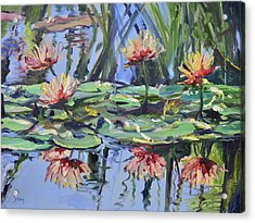 Lily Pond Reflections Acrylic Print