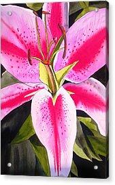 Lily Tenerife Acrylic Print by Sacha Grossel