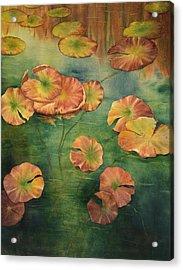 Lilypads Acrylic Print