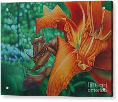 Acrylic Print featuring the painting Lily's Evening by Pamela Clements