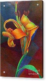 Lily's Rainbow Acrylic Print
