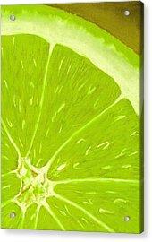 Lime Acrylic Print by Anastasiya Malakhova