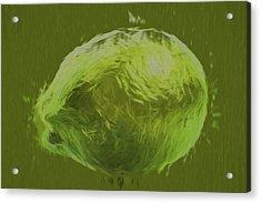 Lime Food Digital Painting Acrylic Print