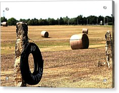Limestone And Hay Acrylic Print by Jason Drake