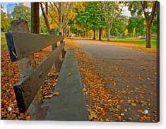 Lincoln Park Bench In Fall Acrylic Print