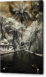 Lincoln Road Pool Acrylic Print