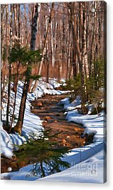 Lincoln Woods Trail Acrylic Print