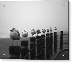 Line In The Storm Acrylic Print