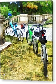 Line Of Bicycles In Park Acrylic Print by Susan Savad