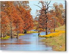 Lined In Yellow Acrylic Print