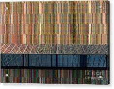 Lines - Pop Acrylic Print by Hannes Cmarits