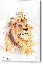 Lion 3 Acrylic Print