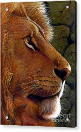 Lion King Acrylic Print by Jurek Zamoyski