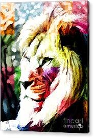 Lion - Leone Acrylic Print by Ze  Di