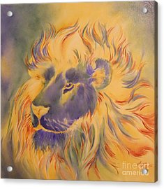 Lion Of Another Color Acrylic Print by Summer Celeste