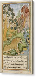 Lion Of The Plains Near Baghdad Acrylic Print by British Library