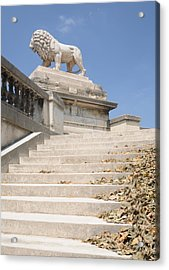 Lion Tuileries Garden Paris Acrylic Print by Jeremy Voisey