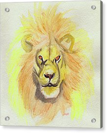 Lion Yellow Acrylic Print by First Star Art