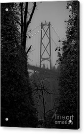 Lions Gate Bridge Acrylic Print by Nancy Harrison