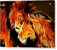 Lions In Love Acrylic Print by Pamela Johnson