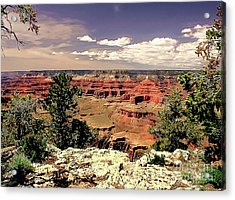 Lipan Point  Grand Canyon Acrylic Print by Bob and Nadine Johnston
