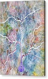 Lipid Branches Acrylic Print by Sumit Mehndiratta