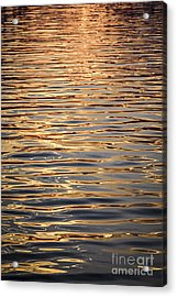 Liquid Gold Acrylic Print by Elena Elisseeva