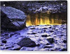 Liquid Gold Acrylic Print