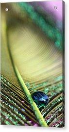 Liquid Reflections Acrylic Print