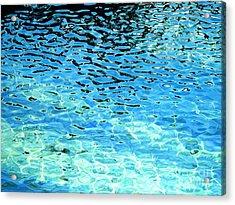 Liquid Tango Acrylic Print by Carina Mascarelli