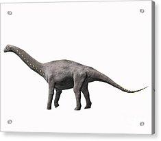 Lirainosaurus Astibae, Late Cretaceous Acrylic Print by Nobumichi Tamura