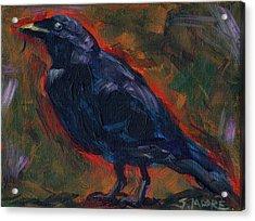 Lisa's Blackbird Acrylic Print by Susan Moore