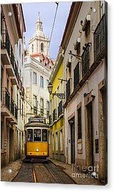 Lisbon Tram Acrylic Print by Carlos Caetano
