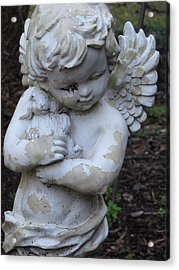 Acrylic Print featuring the photograph Little Angel by Beth Vincent