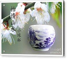 Little Ball Cup Acrylic Print