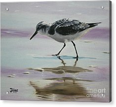 Little Beach Bird Acrylic Print
