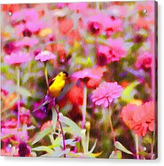 Little Birdie In The Spring Acrylic Print by Bill Cannon