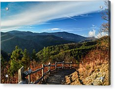 Acrylic Print featuring the photograph Little Cataloochee Overlook In Summer by Debbie Green