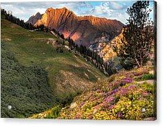 Little Cottonwood Canyon Near Alta Utah Acrylic Print