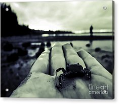 Little Crab 1 Acrylic Print by Arlene Sundby