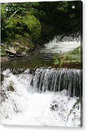 Little Creek Falls Acrylic Print by Rich Collins