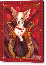 Little Dogs- Chihuahua Acrylic Print