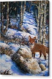 Acrylic Print featuring the painting Little Fox by Megan Walsh