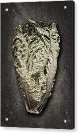 Little Gem Lettuce Acrylic Print by Tom Mc Nemar