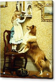Little Girl And Her Sheltie Acrylic Print by Charles Burton Barber