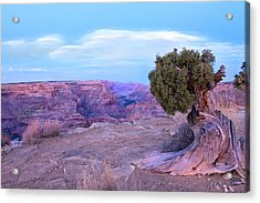Little Grand Canyon Acrylic Print