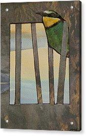 Little Green Bird Acrylic Print