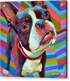 Acrylic Print featuring the painting Little Hank by Robert Phelps