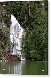 Little Laurel Branch Falls Acrylic Print